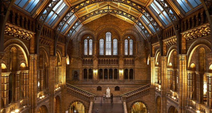 OurKidBrother appointed by Natural History Museum as entertainment supplier