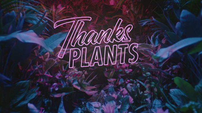 Quirky new ad by 180 Kingsday for Flower Council of Holland shows appreciation for plants