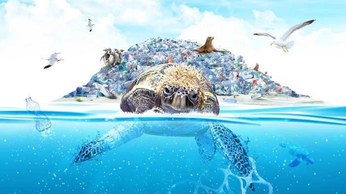 Sir Rod Stewart appears as a sea singing turtle in SodaStream's campaign against plastic pollution
