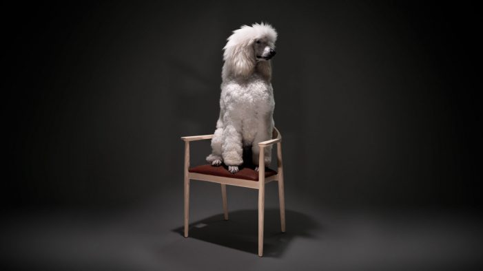 Vinge tells a spellbinding story about a chair with a special purpose in new ad by ANR BBDO